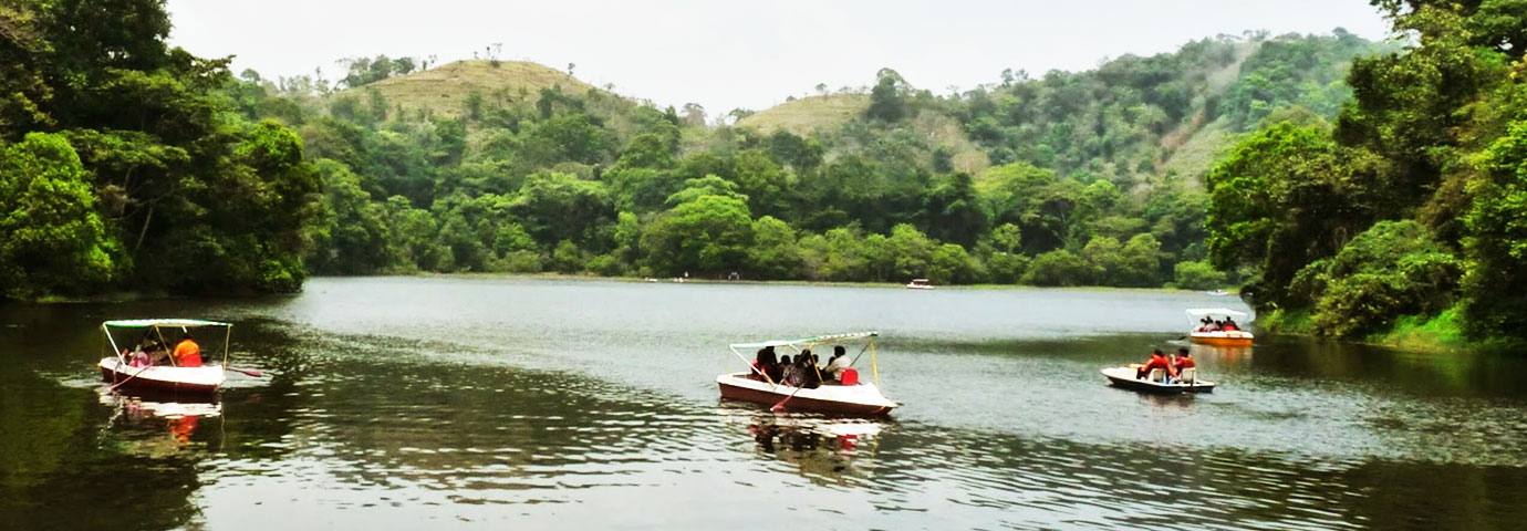 Calicut–Thusharagiri-Wayanad Tour Package